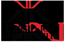 logo_vesuvius copy